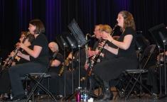 Concert Chapeau – Photo 4 (16 Mars 2014)