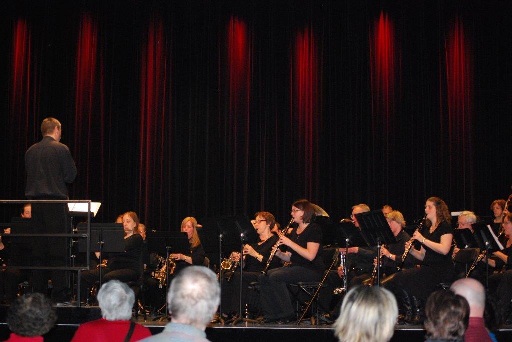 Concert Chapeau - Photo 3 (16 Mars 2014)